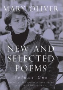 Good Poems for People Who Hate Poetry #best poetry #poetry for beginners