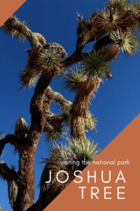 Day Trips From Los Angeles: Joshua Tree National Park #travel tips #where to stay #california